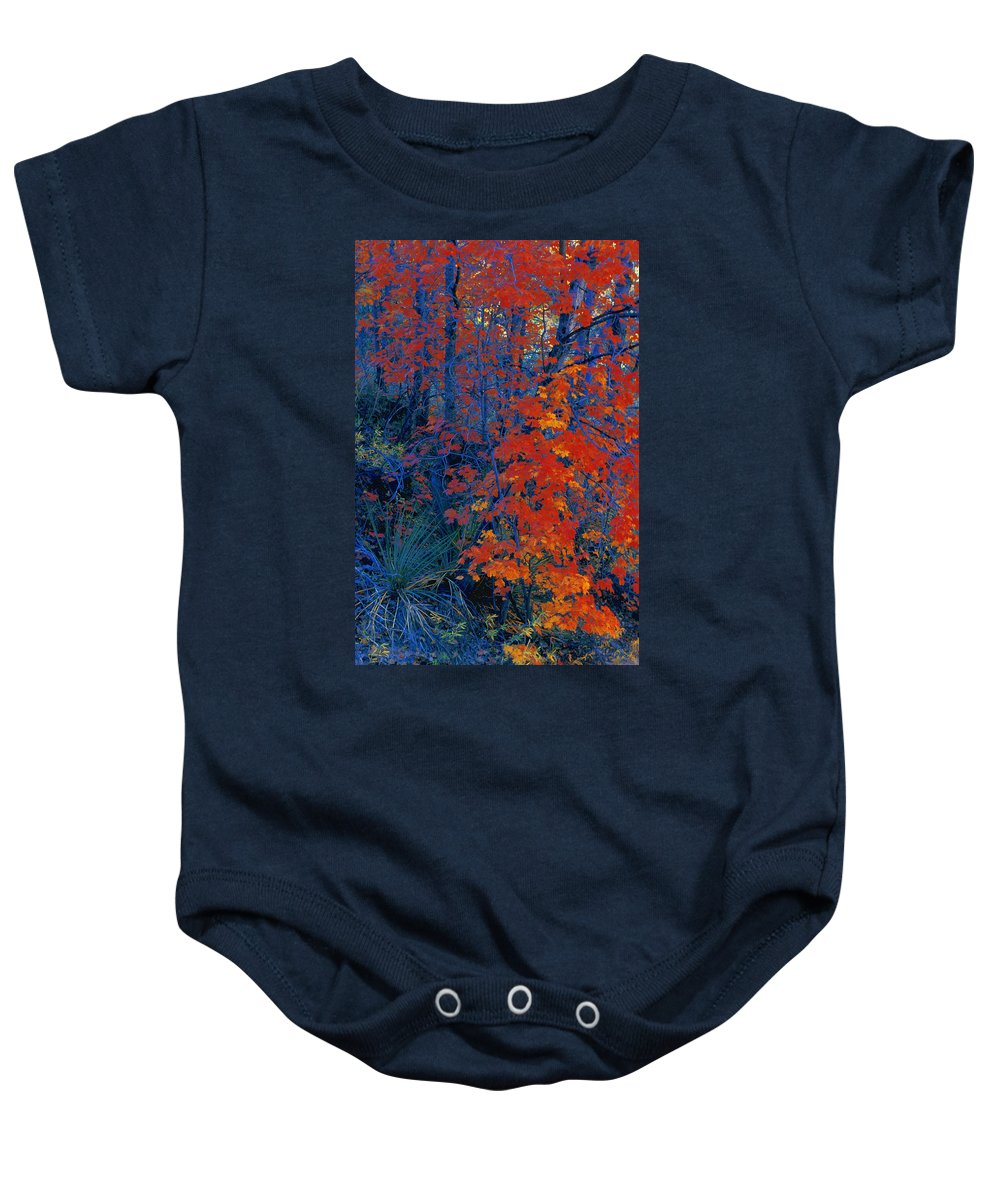 Country Baby Onesie featuring the photograph Autumn Foliage by Don Hammond