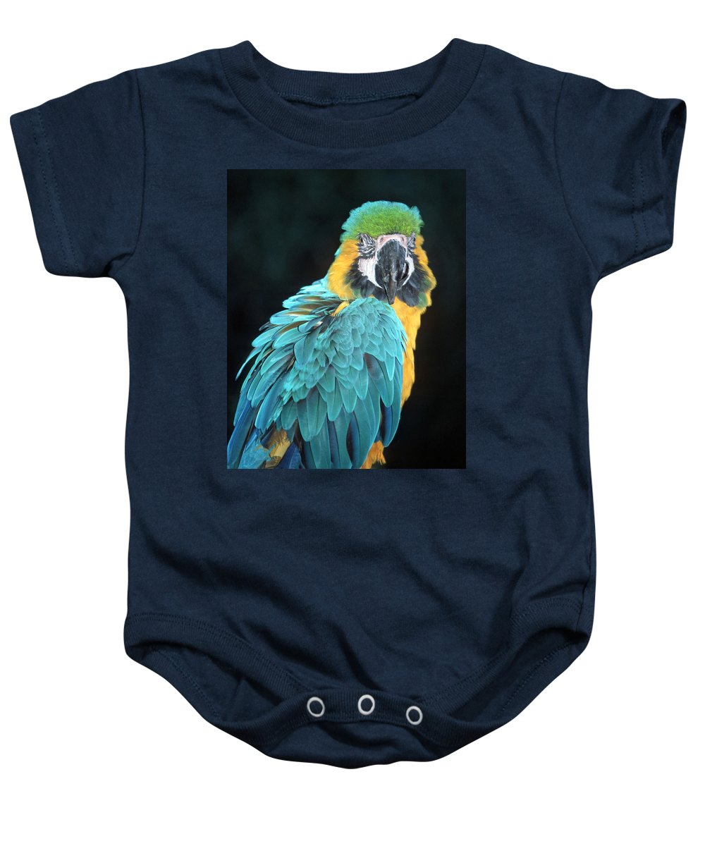 Blue And Gold Macaw Baby Onesie featuring the photograph Blue And Gold Macaw by Larry Allan