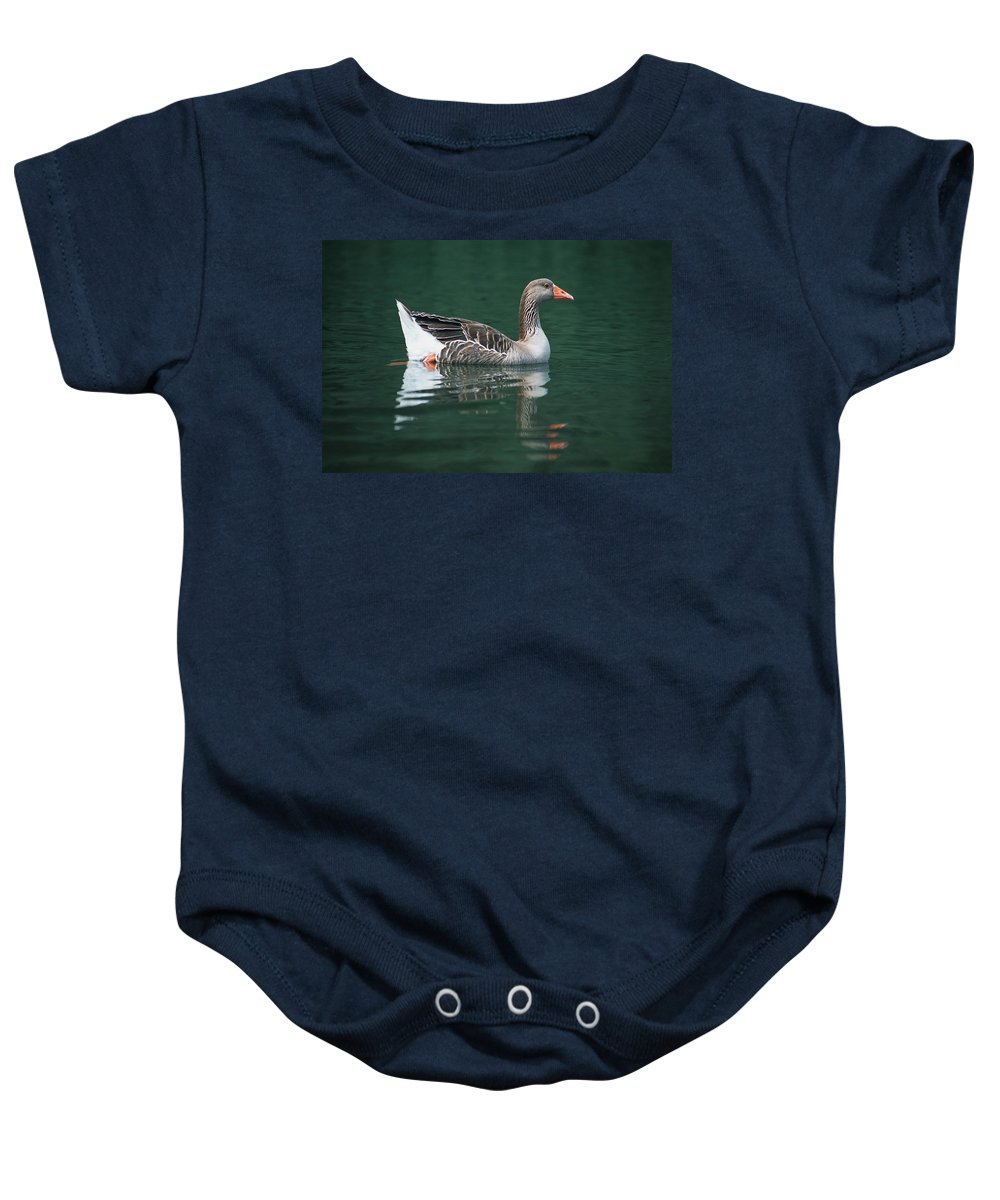 Outdoors Baby Onesie featuring the photograph Duck On Water by Corey Hochachka