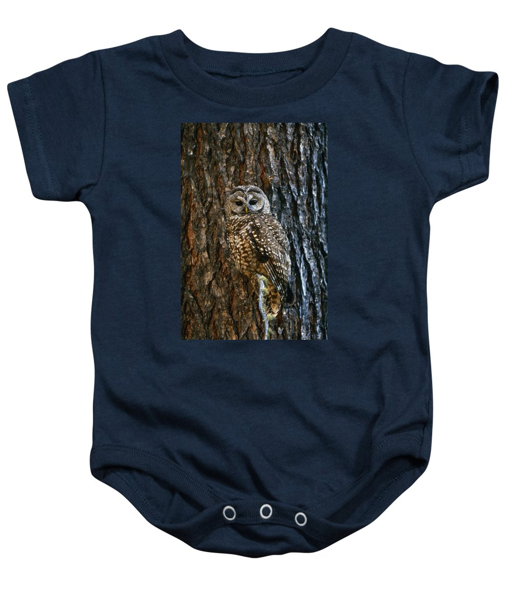 Animal Baby Onesie featuring the photograph Mexican Spotted Owl Camouflaged Against by Natural Selection David Ponton