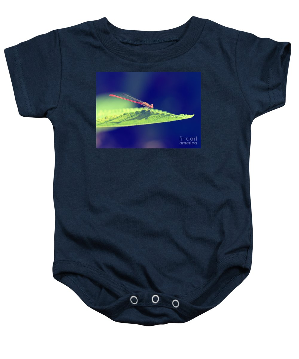 Damselfly Baby Onesie featuring the photograph Red Damselfly by Betty LaRue