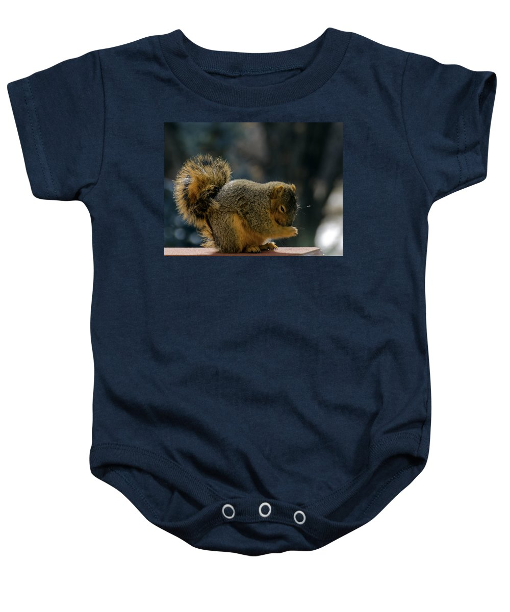 Usa Baby Onesie featuring the photograph Thank You For The Nuts by LeeAnn McLaneGoetz McLaneGoetzStudioLLCcom