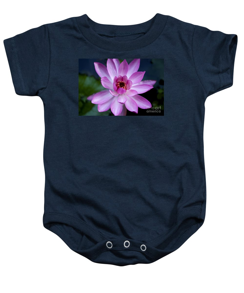 Flower Baby Onesie featuring the photograph Whisper Sweet Nothings by Kerryn Madsen-Pietsch