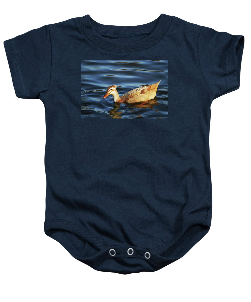 Duck Baby Onesie featuring the photograph Puffy Headed Duck by Belinda Stucki