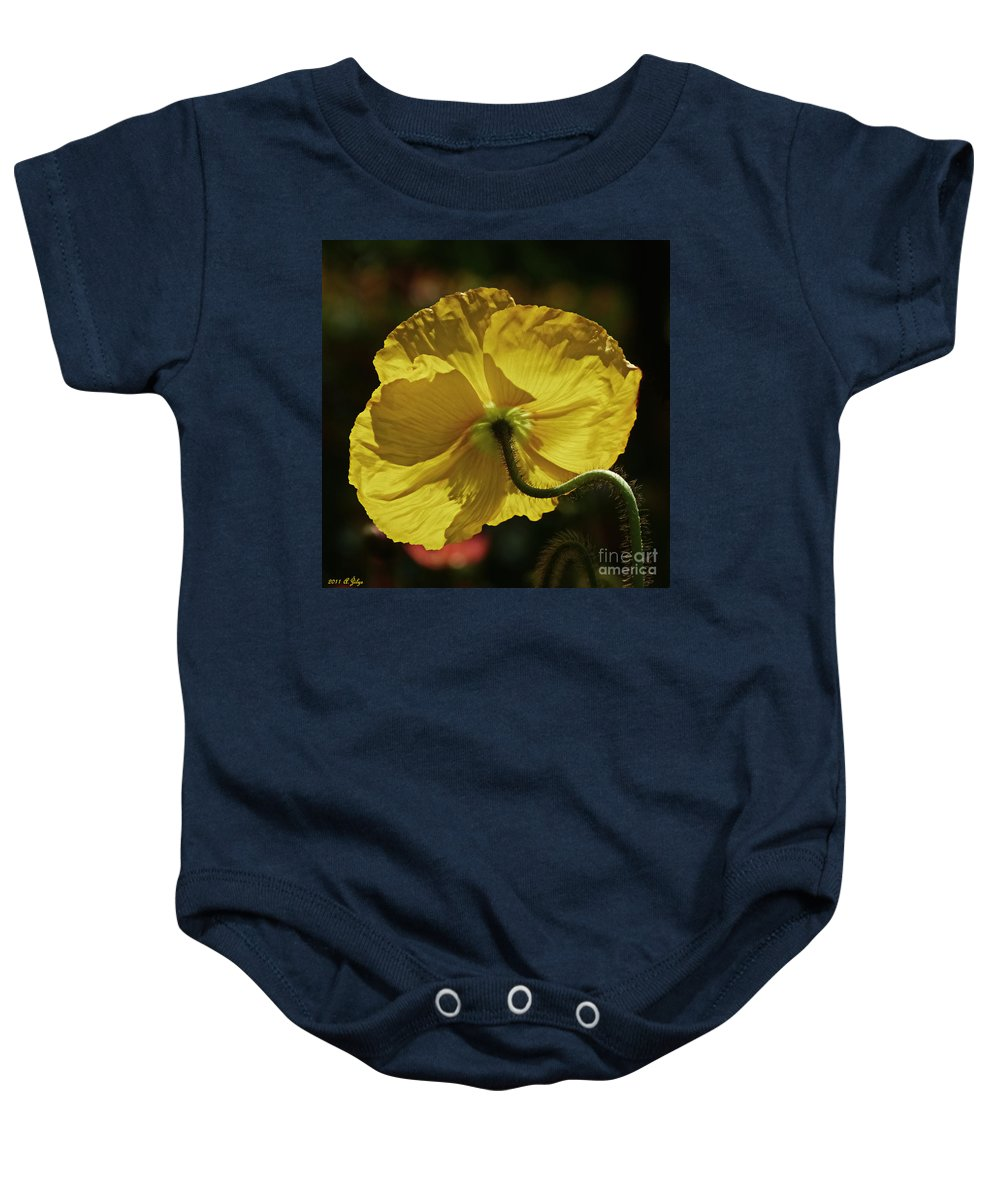 Poppy Baby Onesie featuring the photograph 2011, Yellow Poppy by Arvydas Zilys
