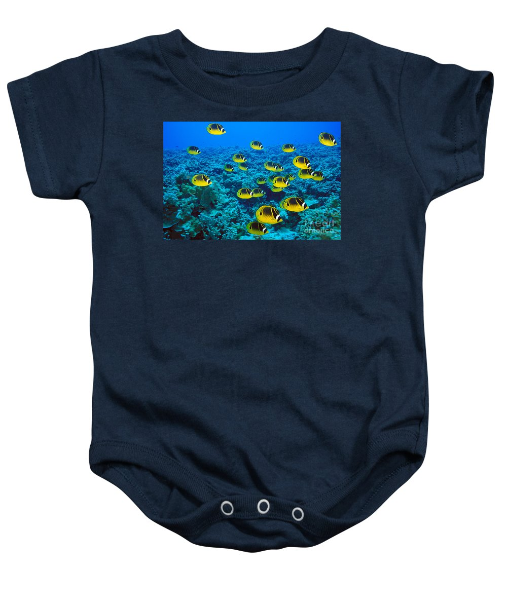 Animal Art Baby Onesie featuring the photograph Raccoon Butterflyfish by Dave Fleetham - Printscapes