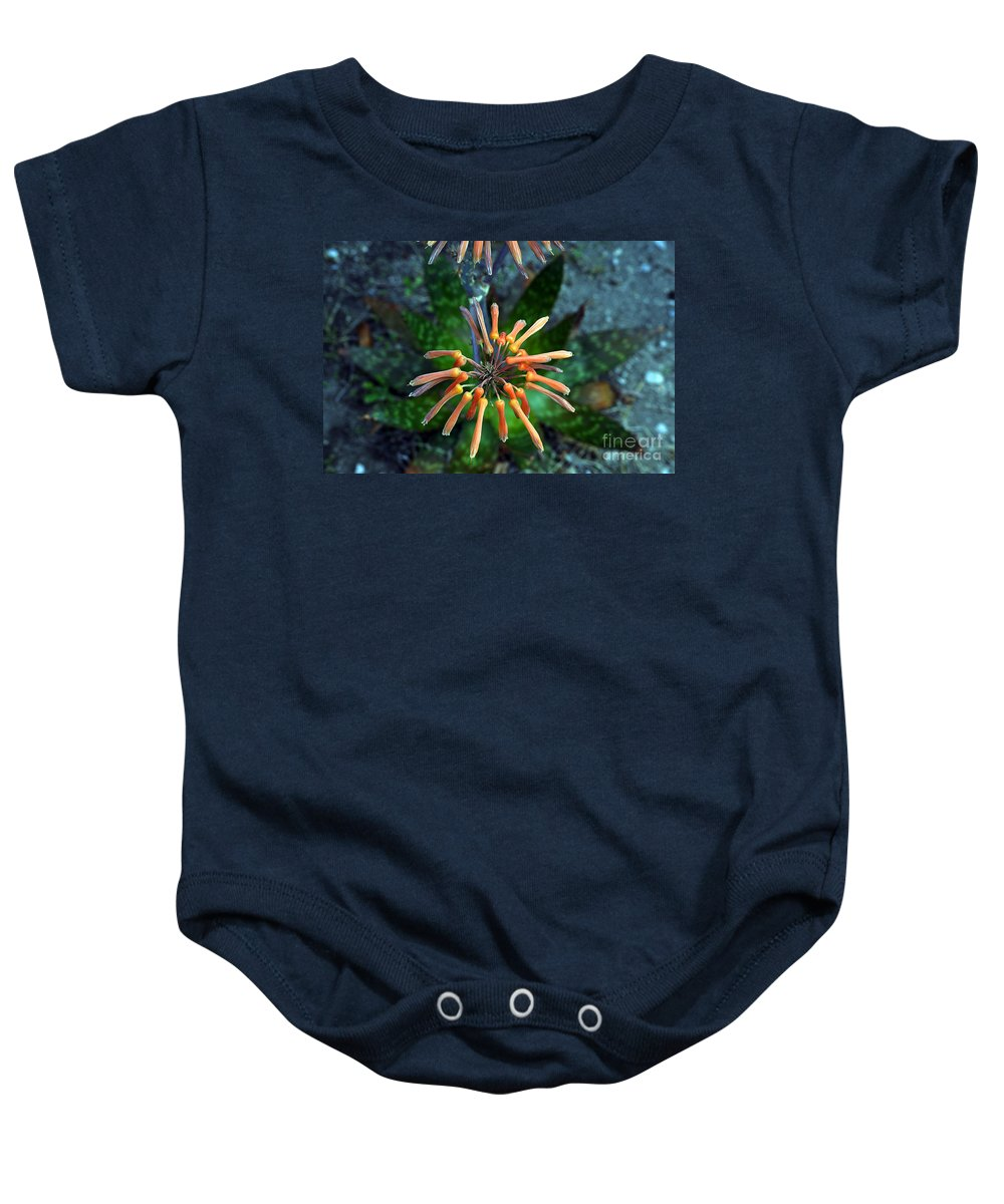 Clay Baby Onesie featuring the photograph Aloe Vera by Clayton Bruster