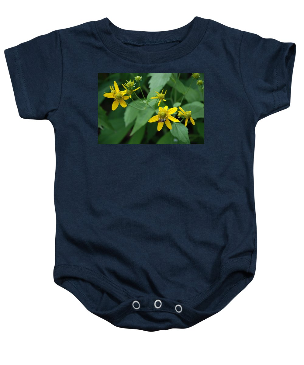 Macro Baby Onesie featuring the photograph Bee On A Flower by Rob Hans