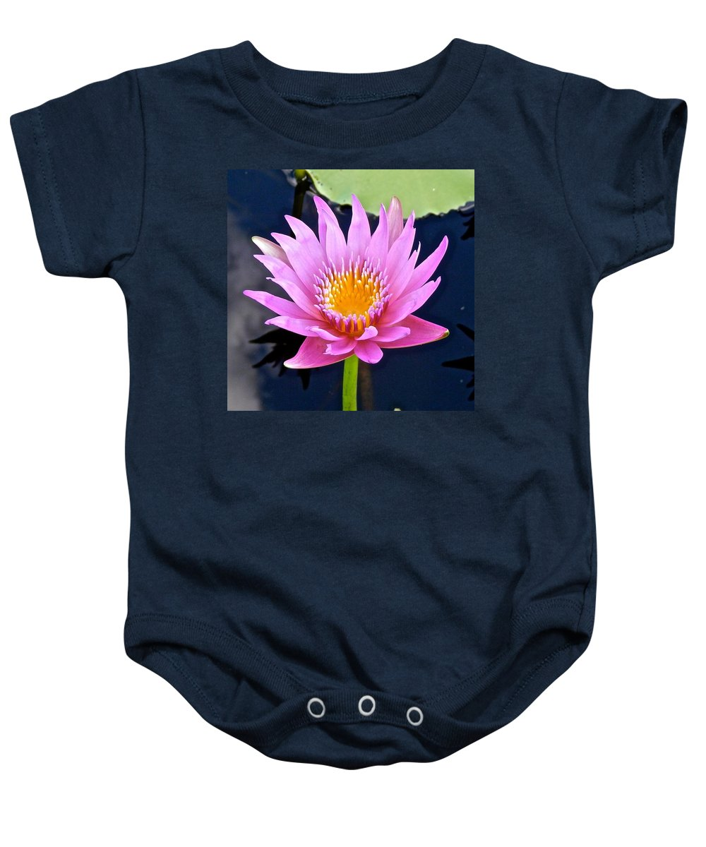Lotus Baby Onesie featuring the photograph Beyond Beautiful Water Lily 2 by Joe Wyman