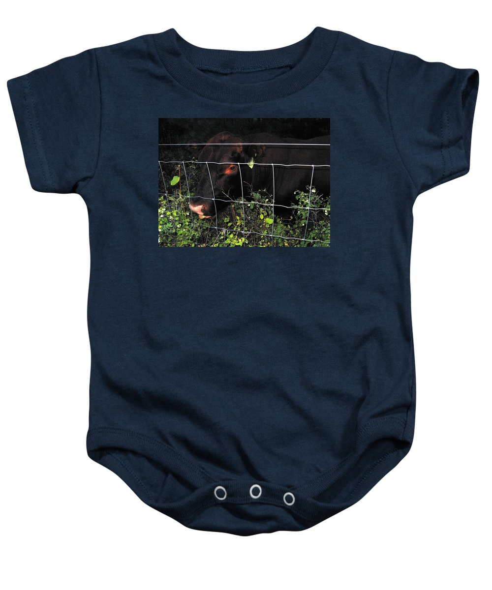 Bull Baby Onesie featuring the photograph Bull Nibbling On Snowberries by Will Borden