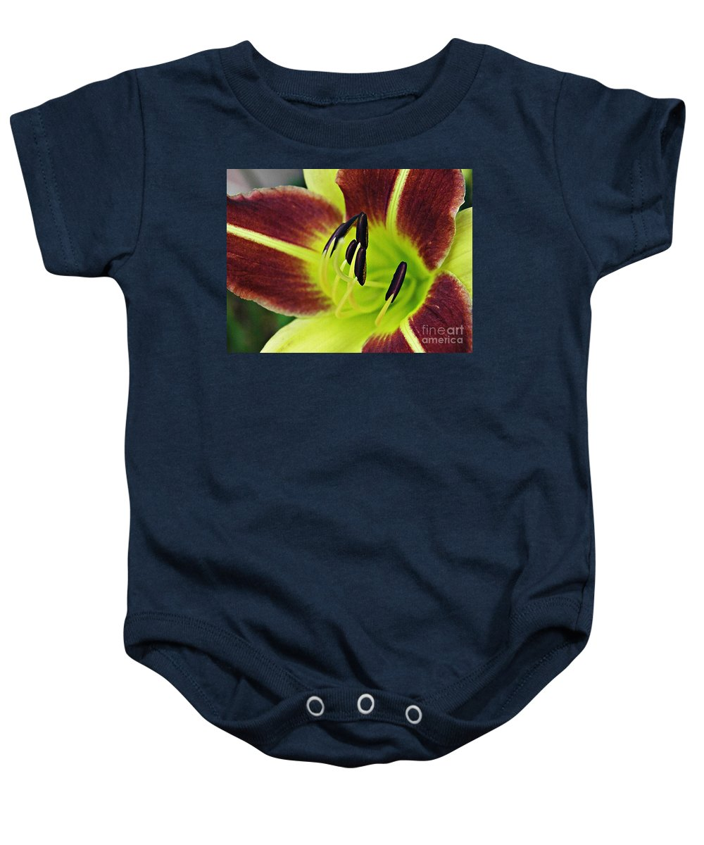 Lily Baby Onesie featuring the photograph Burgundy And Yellow Lily by Sarah Loft