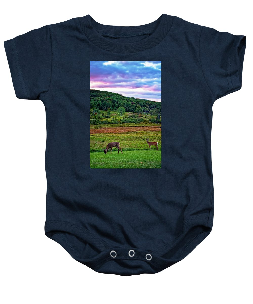 West Virginia Baby Onesie featuring the photograph Canaan Valley Evening by Steve Harrington