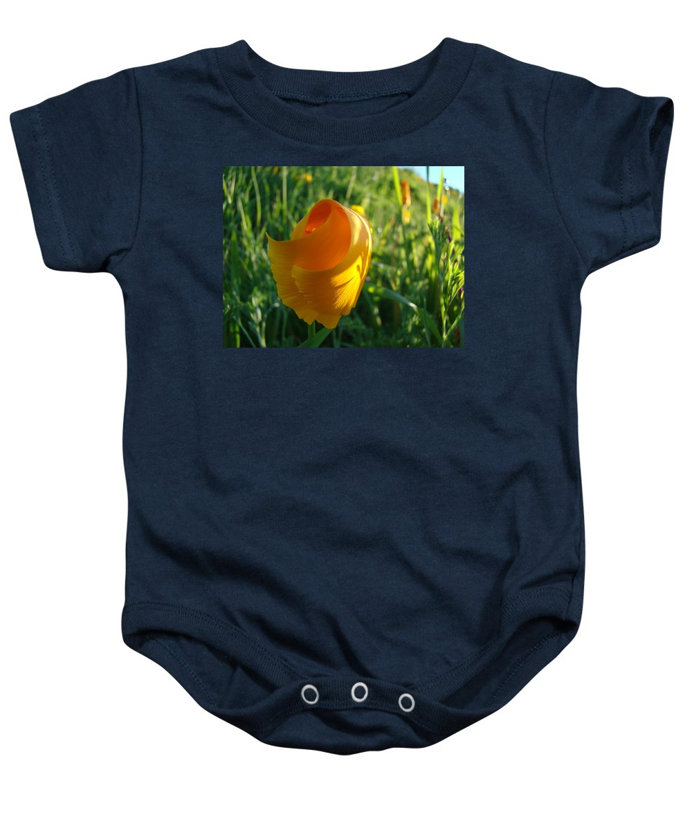 �poppies Artwork� Baby Onesie featuring the photograph Contemporary Orange Poppy Flower Unfolding In Sunlight 10 Baslee Troutman by Baslee Troutman