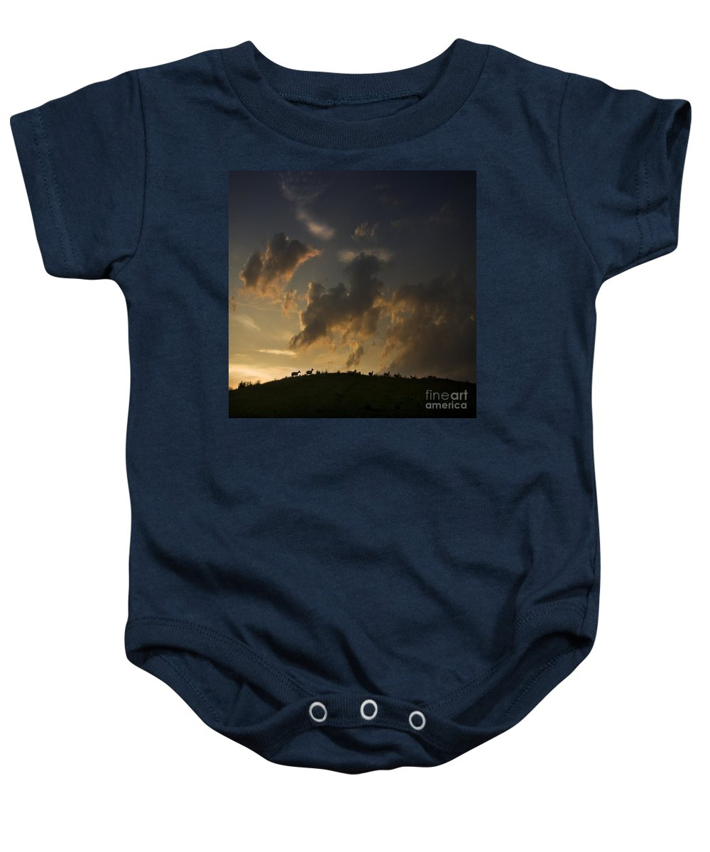 Sheep Baby Onesie featuring the photograph Counting The Sheep Before Sleeping by Angel Ciesniarska