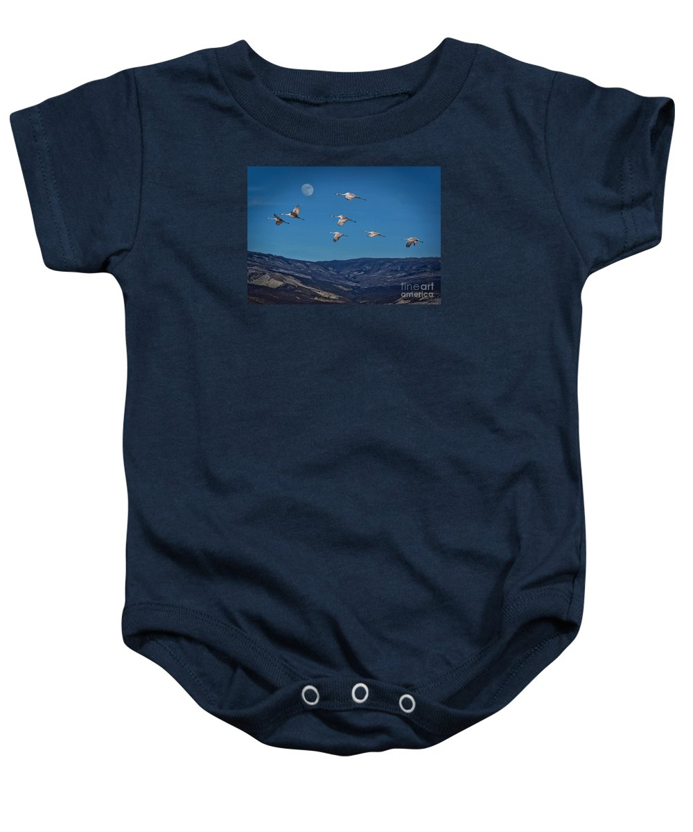 Sky Baby Onesie featuring the photograph Cranes Across Colorado Blue by Janice Pariza