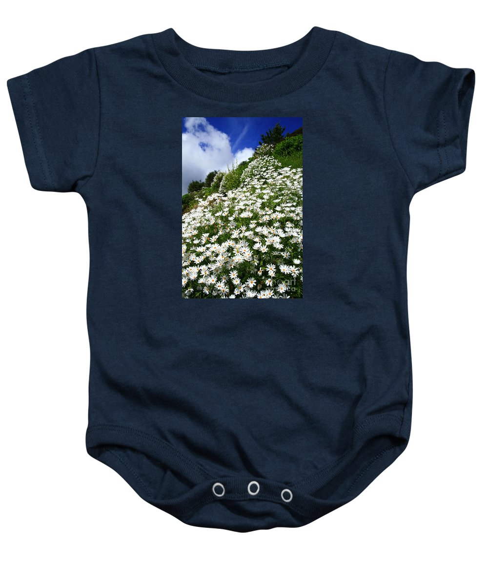 Countryside Baby Onesie featuring the photograph Daisies by Gaspar Avila