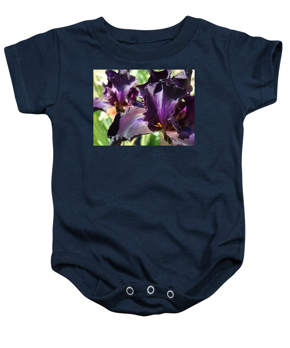�irises Artwork� Baby Onesie featuring the photograph Deep Purple Irises Dark Purple Irises Summer Garden Art Prints by Baslee Troutman
