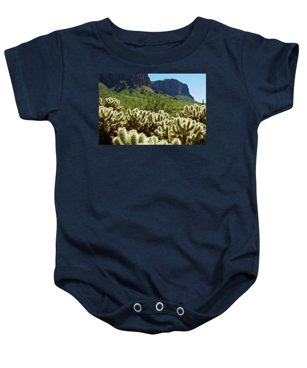 Arizona Baby Onesie featuring the photograph Desert Cholla 1 by Jill Reger