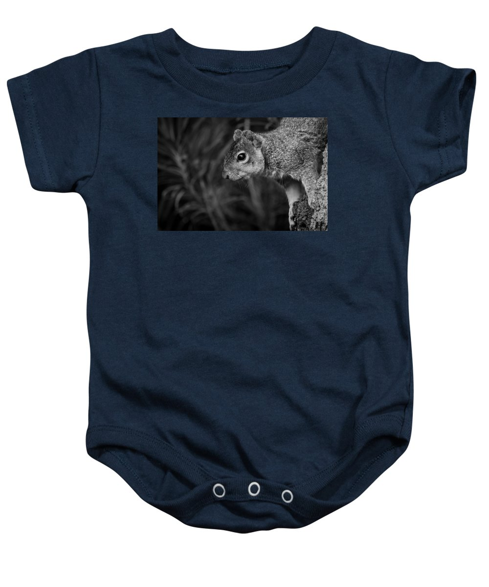 Squirrel Baby Onesie featuring the photograph Downward Facing Squirrel by Brent Martin - My Photography Adventure
