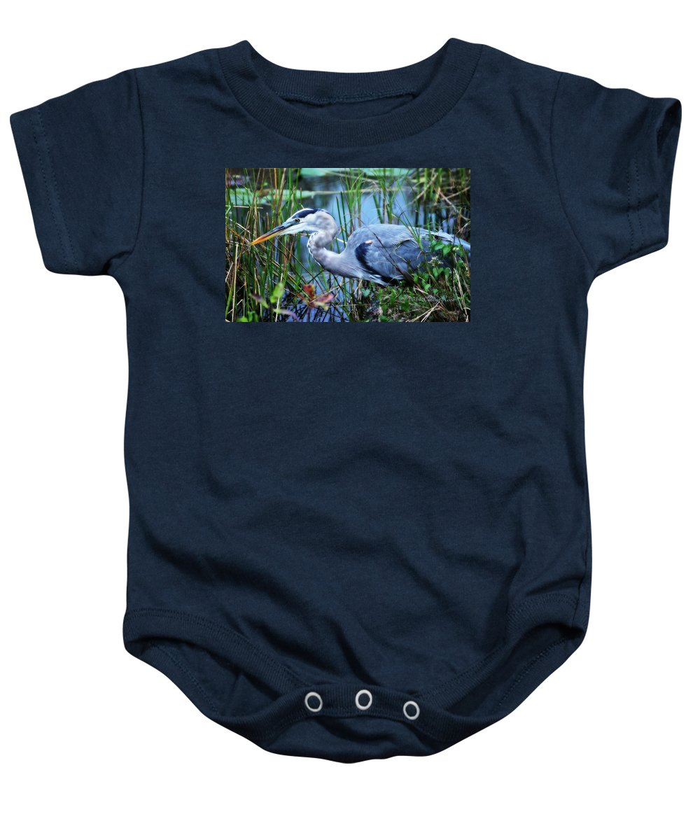 Great Blue Heron Baby Onesie featuring the photograph Dreamland Great Blue Heron by Cindy Rose