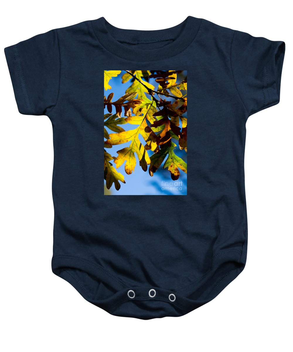 Fall Baby Onesie featuring the photograph Fall Foliage by Matt Suess