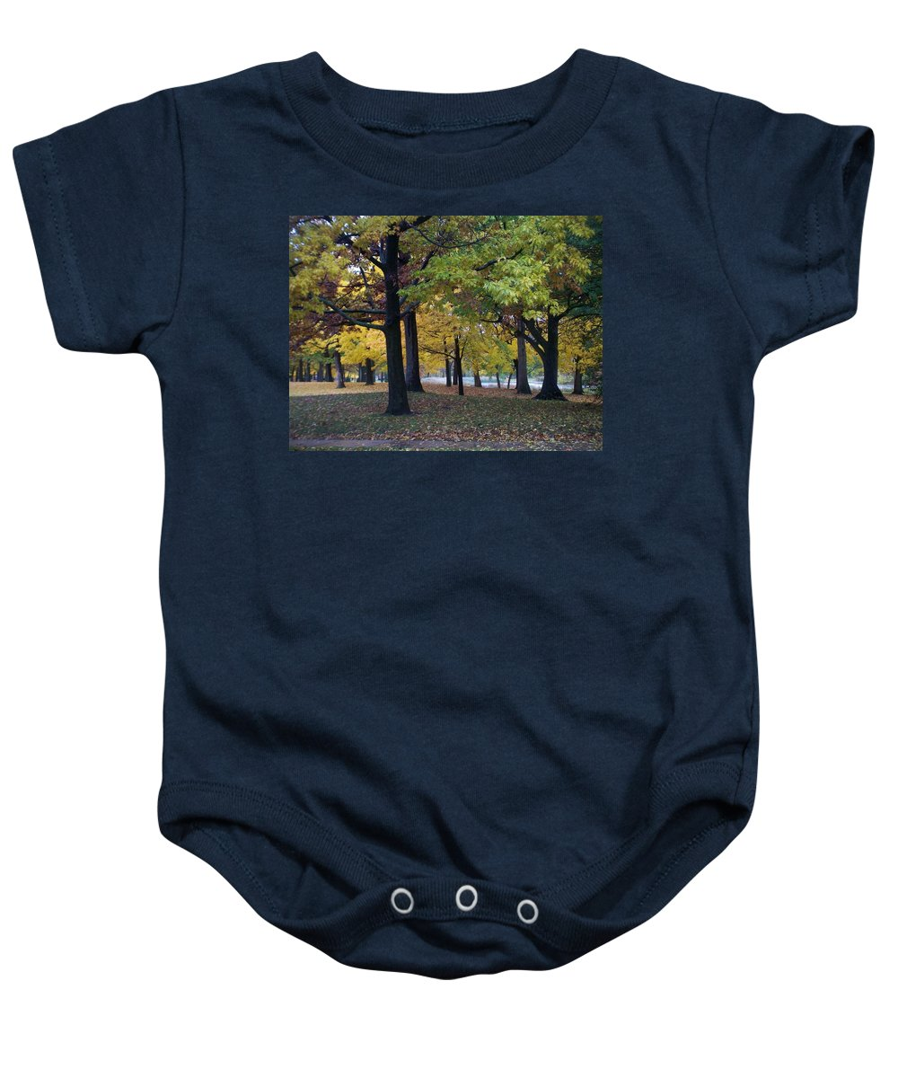 Fall Baby Onesie featuring the photograph Fall Series 14 by Anita Burgermeister