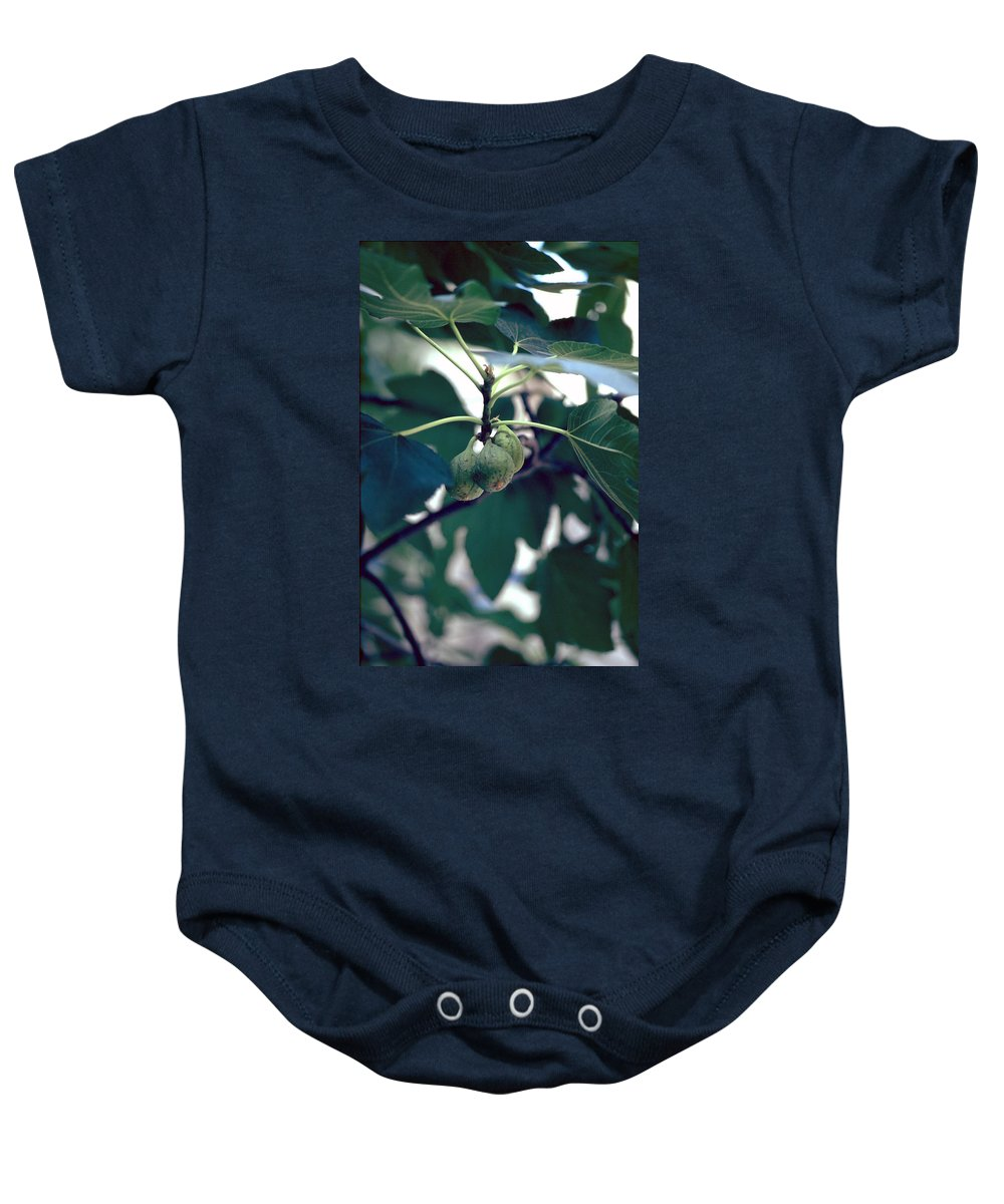 Fig Baby Onesie featuring the photograph Fig by Flavia Westerwelle