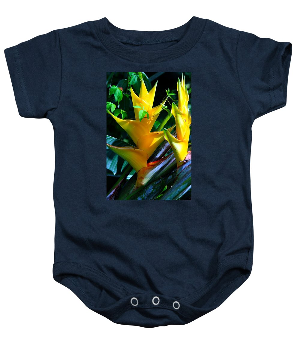 Heliconia Baby Onesie featuring the photograph Heliconia Caribea Gold by Karon Melillo DeVega