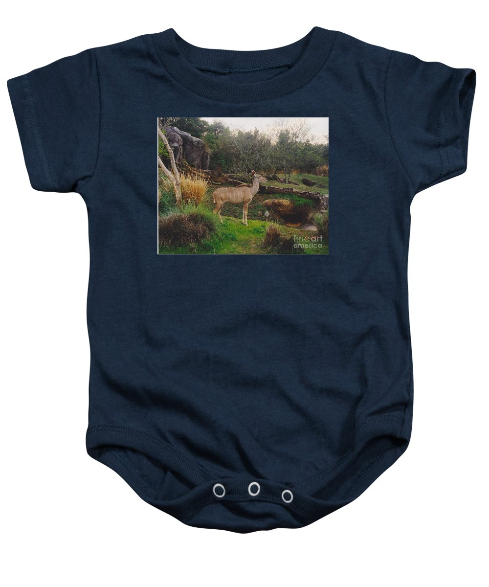 Scenery Baby Onesie featuring the photograph In The Jungle by Michelle Powell