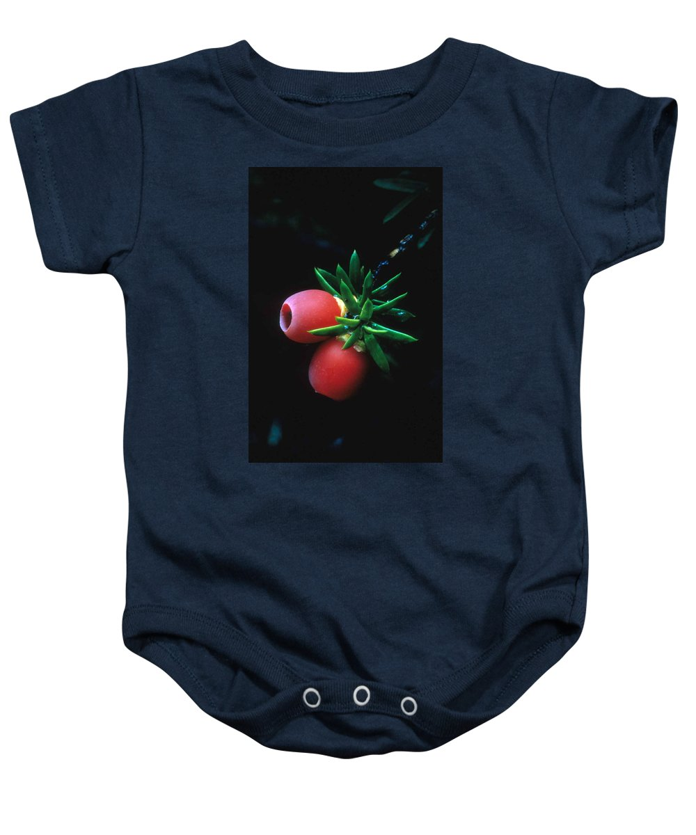 Juniper Berries Baby Onesie featuring the photograph Juniper Berries by Laurie Paci