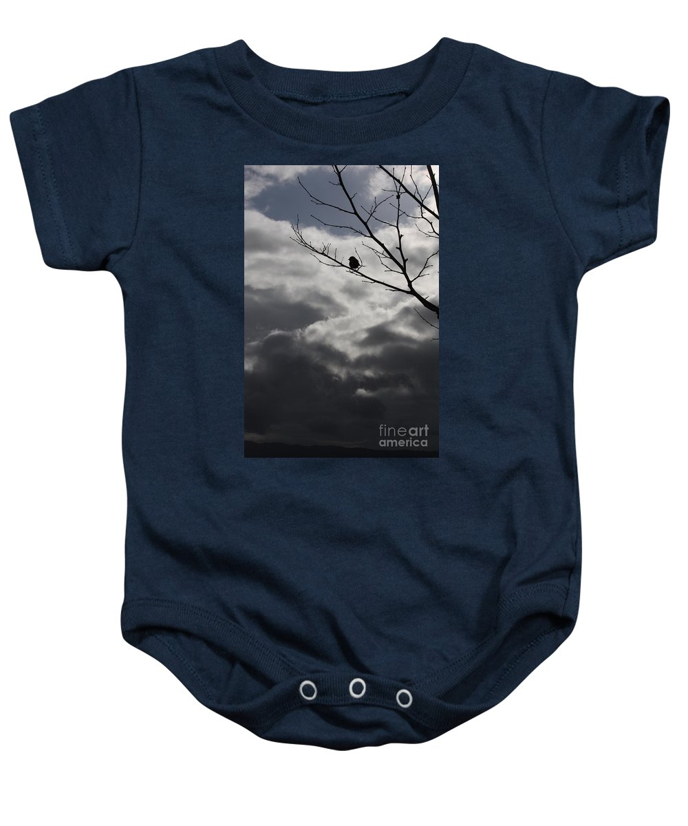 Storm Baby Onesie featuring the photograph Keeping Above The Storm by Carol Groenen