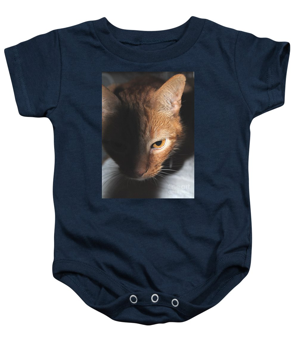 Cat Baby Onesie featuring the photograph Kitty by Jost Houk