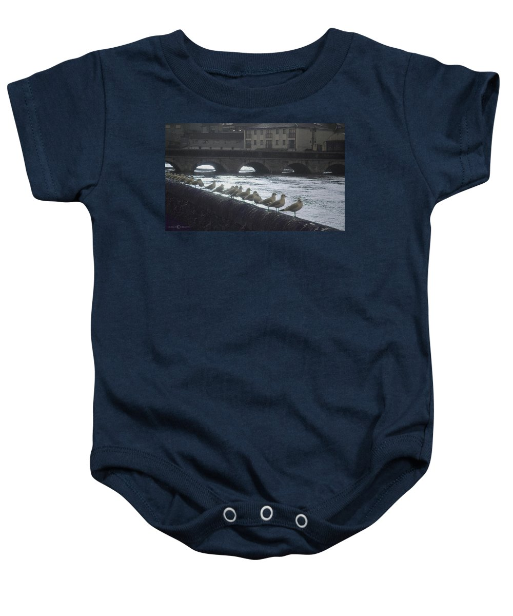 Birds Baby Onesie featuring the photograph Line Of Birds by Tim Nyberg