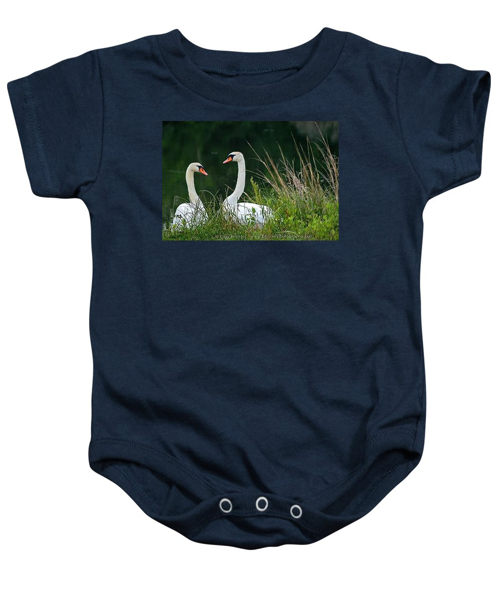 Clay Baby Onesie featuring the photograph Loving Swans by Clayton Bruster