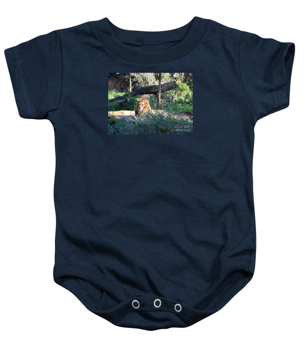 Lion Baby Onesie featuring the photograph Lying Lion by Christiane Schulze Art And Photography