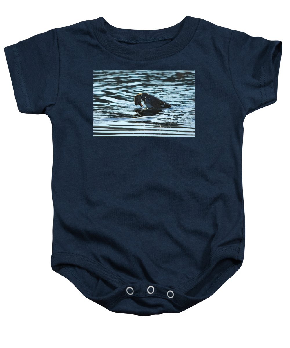 Lake Baby Onesie featuring the photograph Mirror Mirror by Donna Blackhall