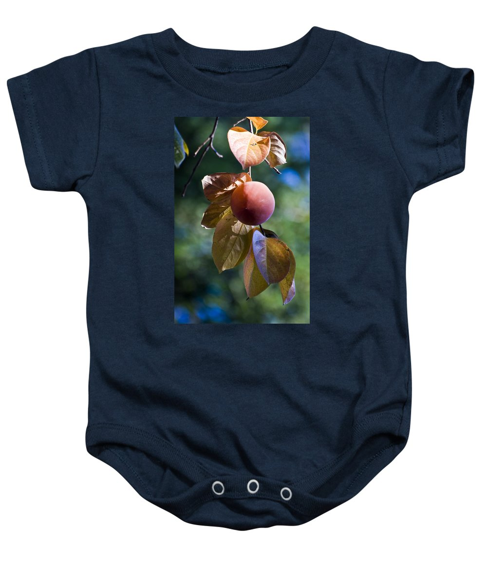 Trees Baby Onesie featuring the photograph Persimmon Tree by Norman Andrus