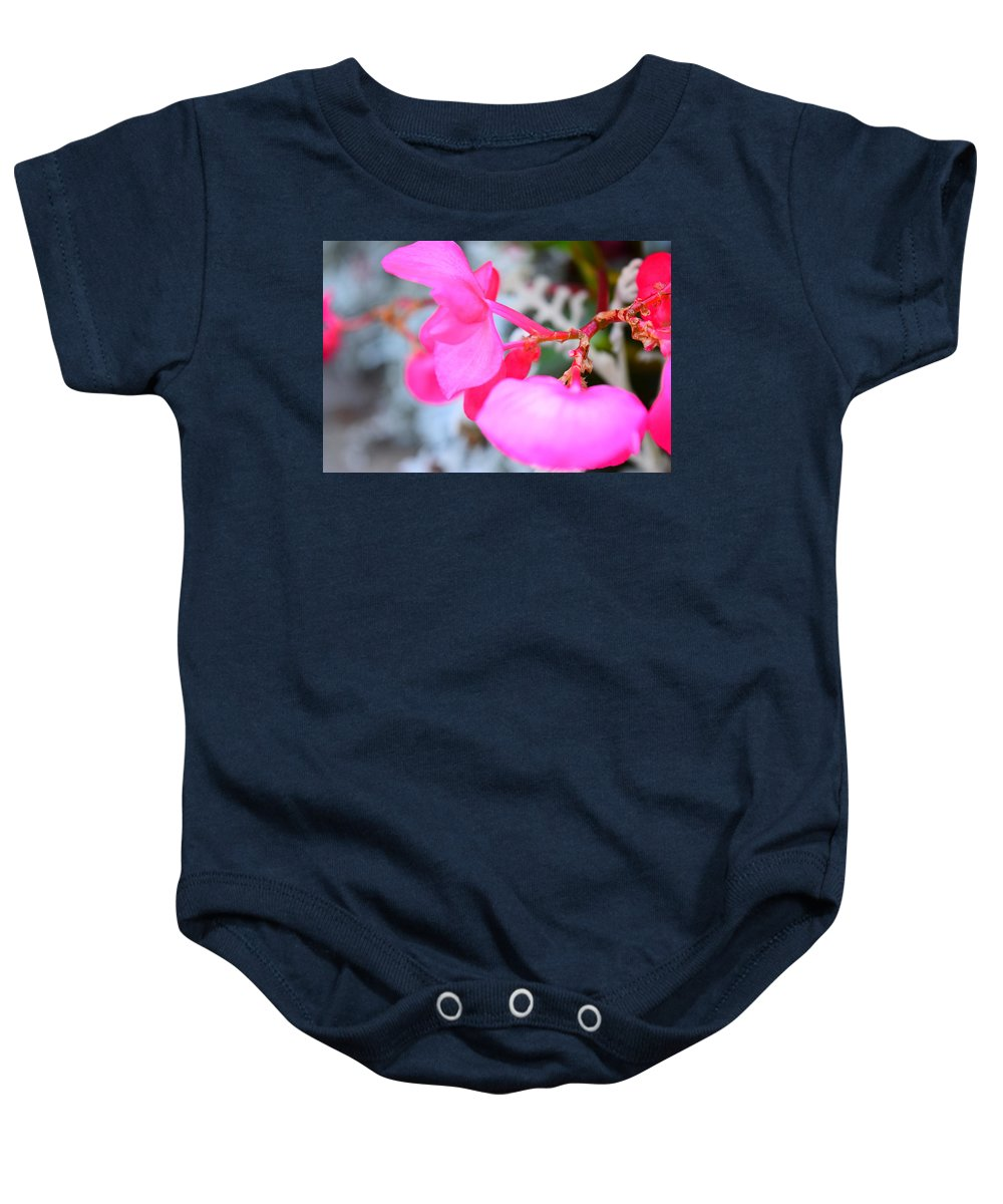 Pink Baby Onesie featuring the photograph Pink Flower by Lindsay Krahenbring