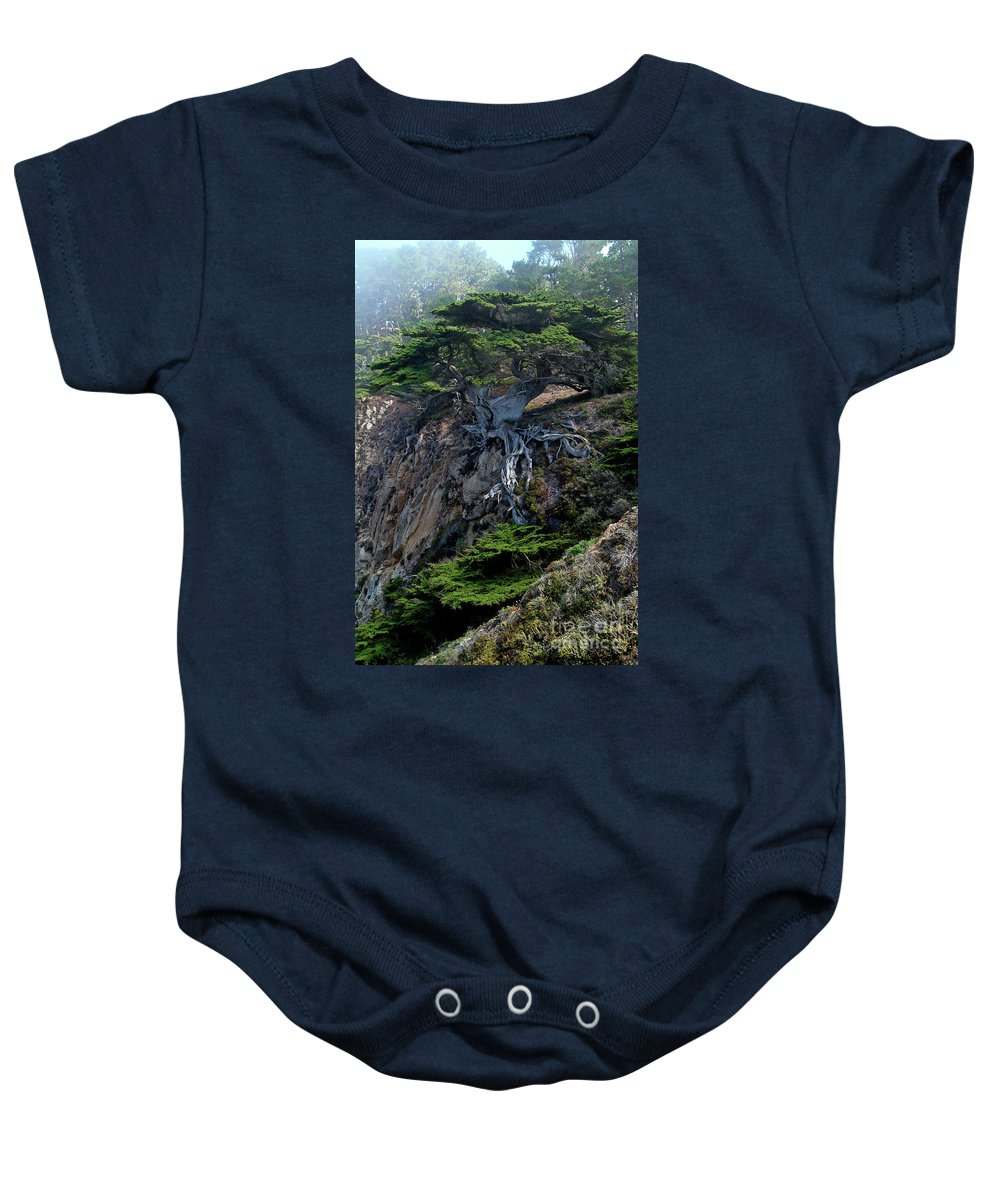 Landscape Baby Onesie featuring the photograph Point Lobos Veteran Cypress Tree by Charlene Mitchell