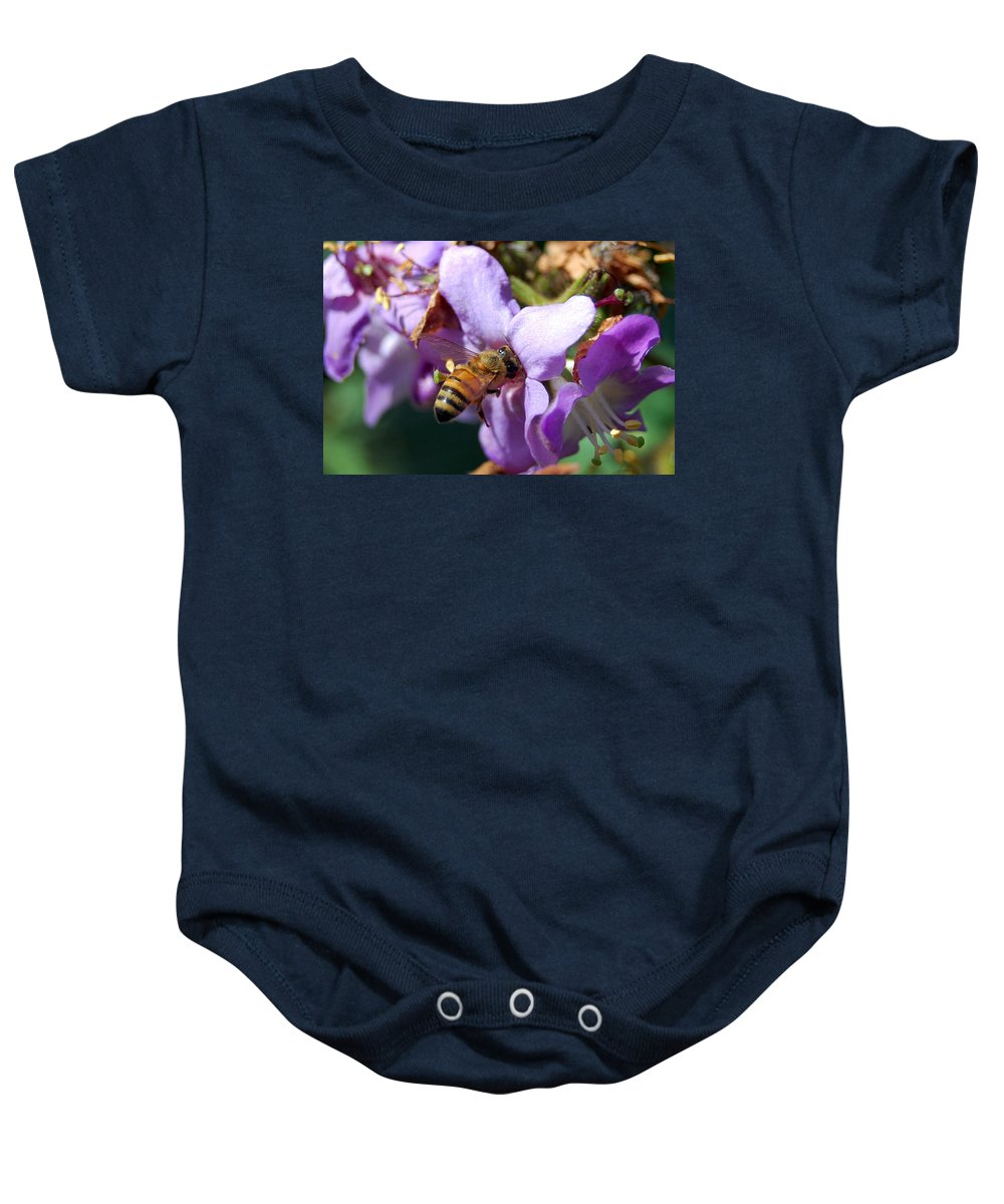 Flower Baby Onesie featuring the photograph Pollinating 2 by Amy Fose