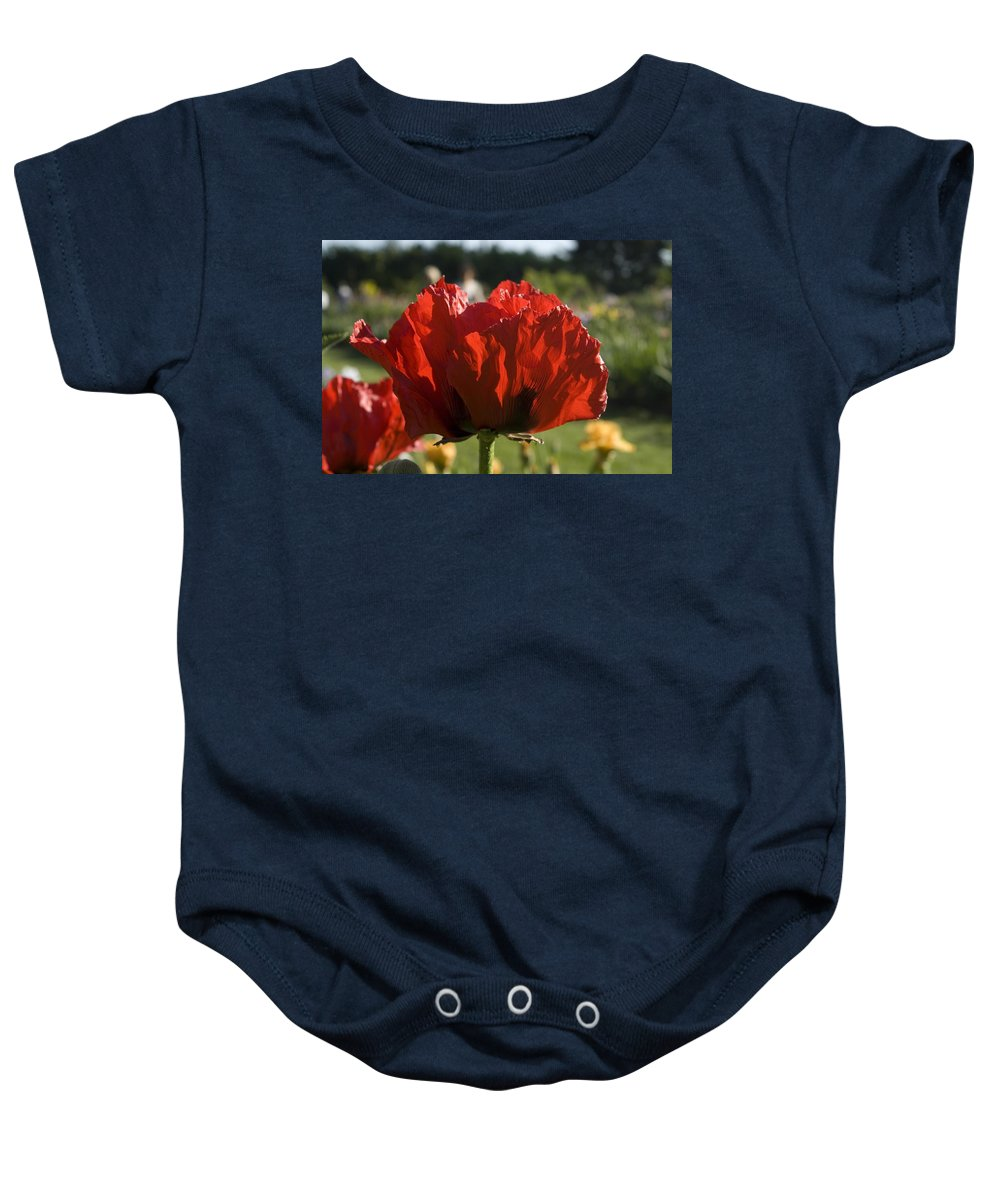 Poppy Baby Onesie featuring the photograph Poppies 4 by Sara Stevenson
