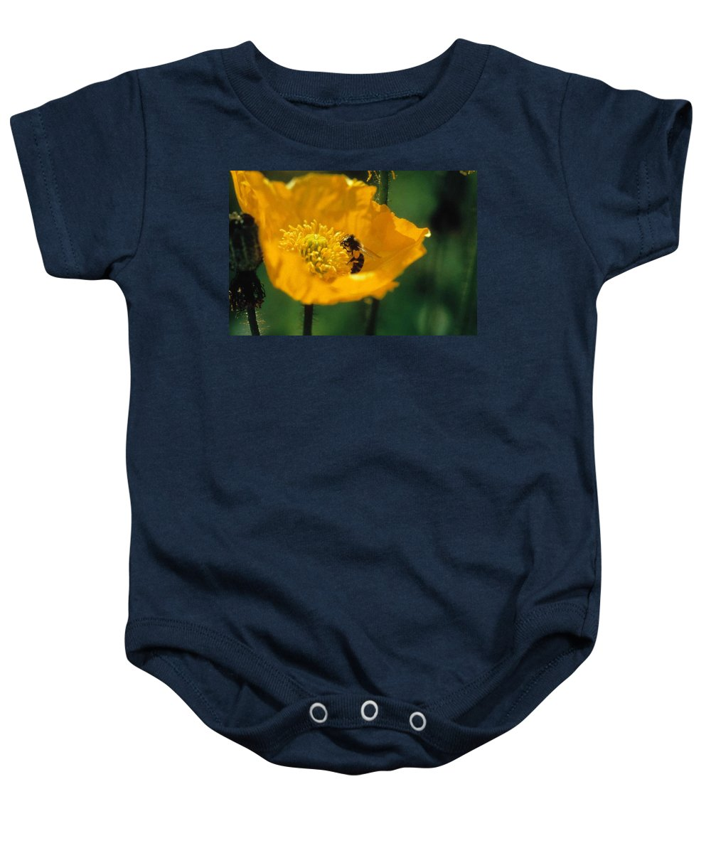 California Poppy Baby Onesie featuring the photograph Poppy With Bee Friend by Laurie Paci