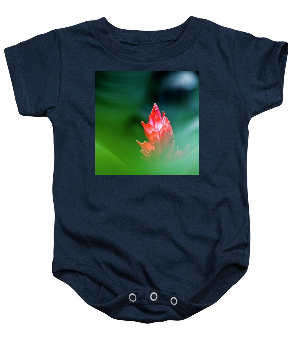 Ginger Flower Baby Onesie featuring the photograph Red Ginger by Heiko Koehrer-Wagner