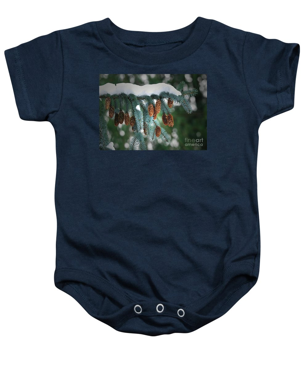 Blue Spuce Cones Baby Onesie featuring the photograph Snow Cones by Sharon Talson