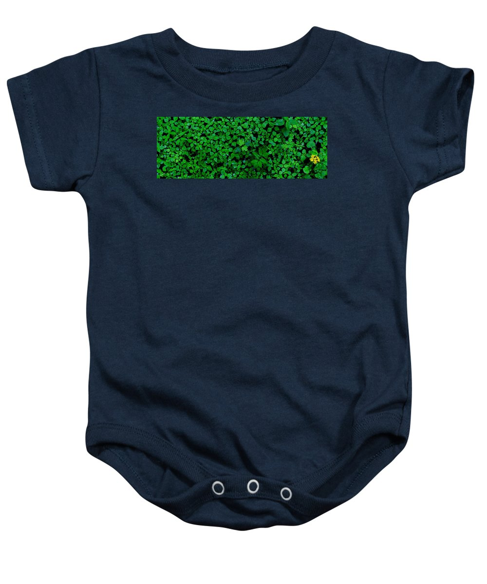 The Minority Baby Onesie featuring the photograph The Minority by Ed Smith