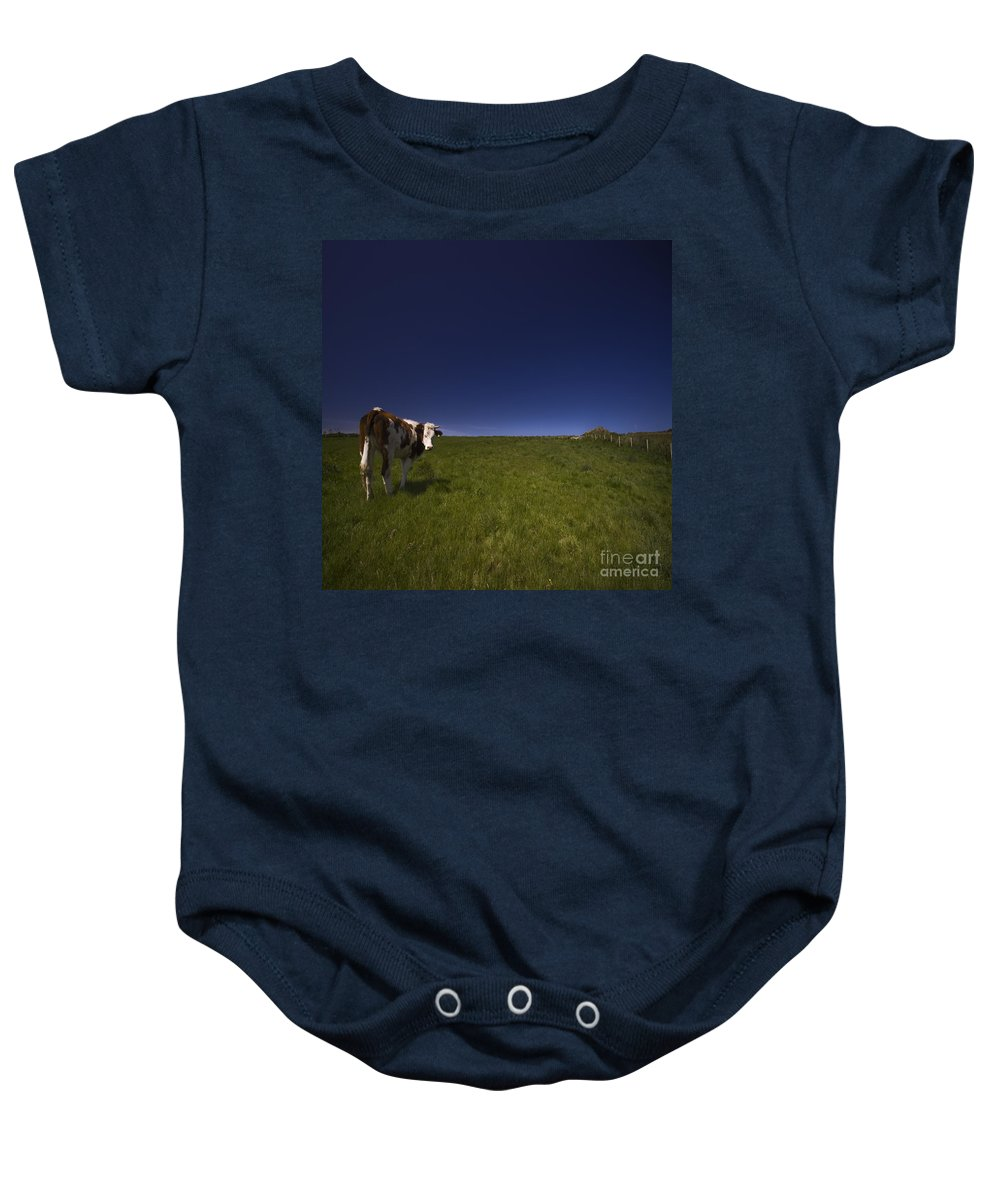 Cow Baby Onesie featuring the photograph The Moody Cow by Angel Ciesniarska