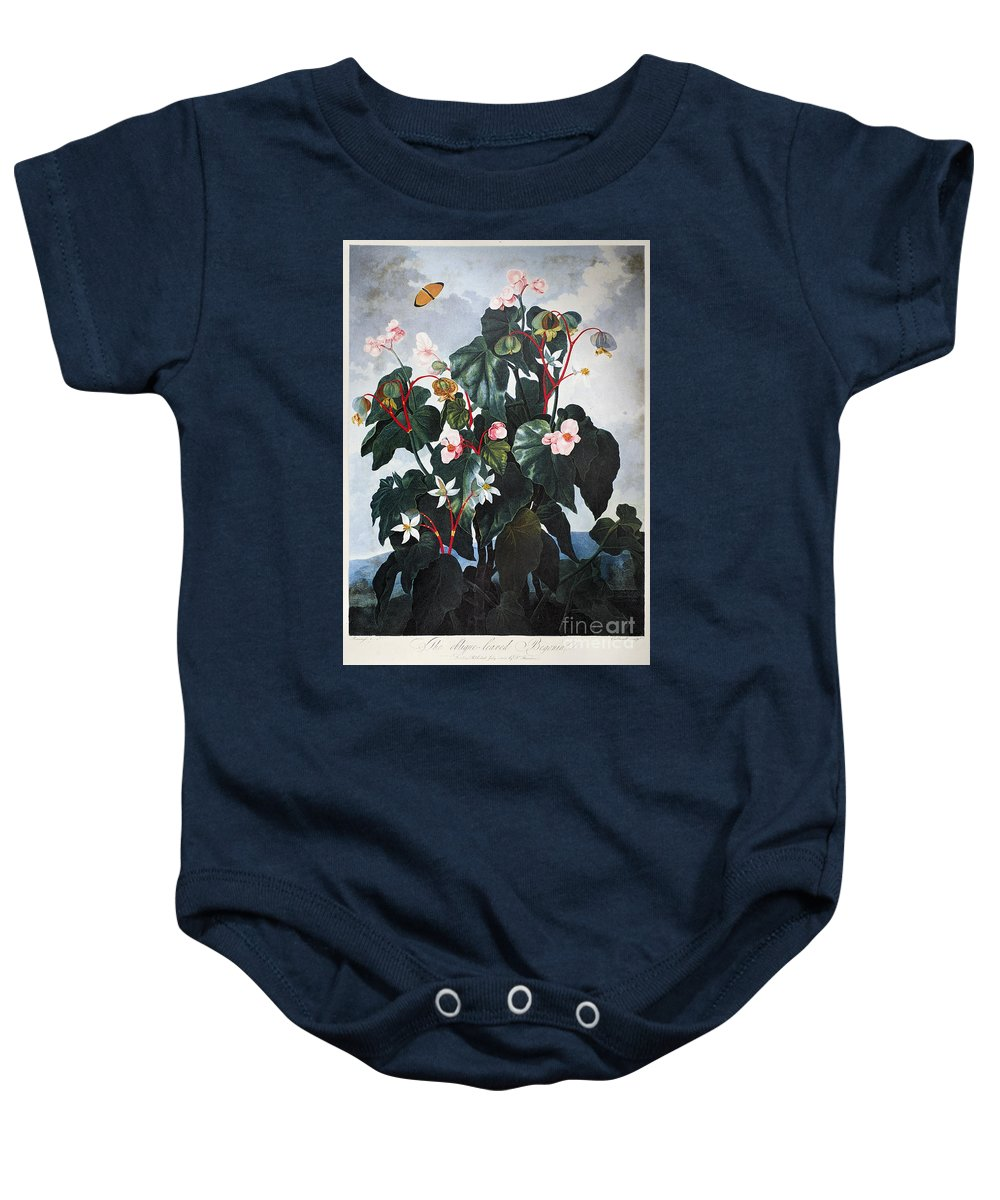 1800 Baby Onesie featuring the photograph Thornton: Begonia by Granger