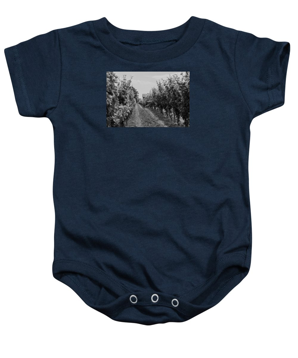 Vineyard Baby Onesie featuring the photograph Vineyards Of Old Horizontal Bw by Photographic Arts And Design Studio