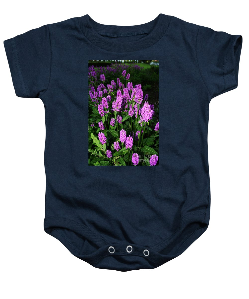 Baby Onesie featuring the photograph Violet by Jamie Lynn