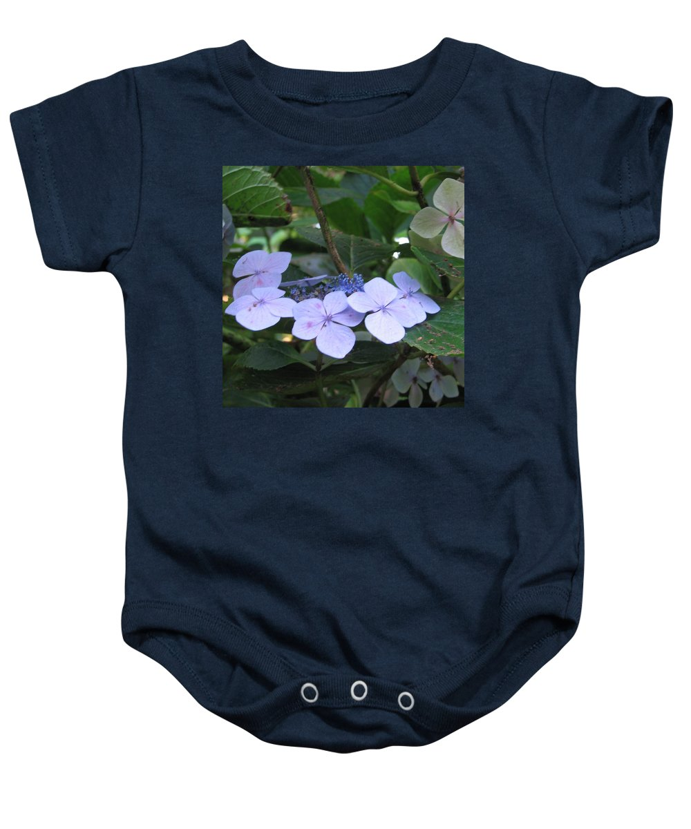 Violets Baby Onesie featuring the photograph Violets O The Green by Kelly Mezzapelle